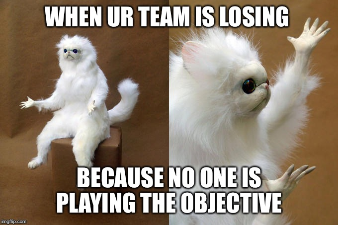 Persian Cat Room Guardian Meme | WHEN UR TEAM IS LOSING BECAUSE NO ONE IS PLAYING THE OBJECTIVE | image tagged in memes,persian cat room guardian | made w/ Imgflip meme maker