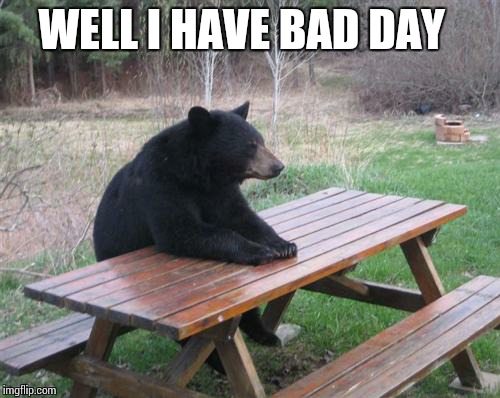 Bad day  bear | WELL I HAVE BAD DAY | image tagged in memes,bad luck bear | made w/ Imgflip meme maker