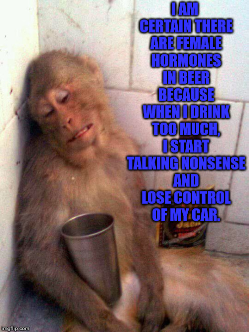 That Explains It |  I AM CERTAIN THERE ARE FEMALE HORMONES IN BEER BECAUSE WHEN I DRINK TOO MUCH, I START TALKING NONSENSE AND LOSE CONTROL OF MY CAR. | image tagged in drunk monkey,animals,memes,funny,monkey | made w/ Imgflip meme maker
