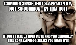 COMMON SENSE THAT'S, APPARENTLY, NOT SO COMMON - BY TINA HOFF IF YOU'VE MADE A DICK MOVE AND YOU GENUINELY FEEL SORRY, APOLOGIZE LIKE YOU ME | image tagged in all i could think while watching the new godzilla movie | made w/ Imgflip meme maker