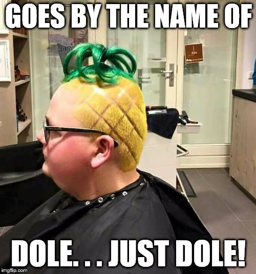 WHOLE DOLE | GOES BY THE NAME OF DOLE. . . JUST DOLE! | image tagged in funny | made w/ Imgflip meme maker