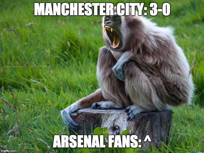 ... what? | MANCHESTER CITY: 3-0 ARSENAL FANS: ^ | image tagged in angery,arsenal,manchester,memes | made w/ Imgflip meme maker