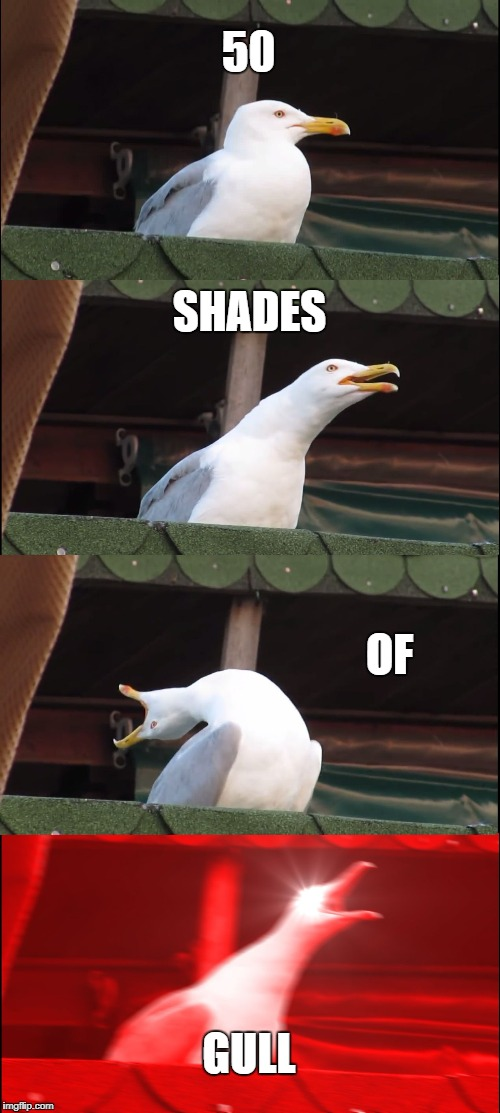 Inhaling Seagull Meme | 50 SHADES OF GULL | image tagged in memes,inhaling seagull | made w/ Imgflip meme maker