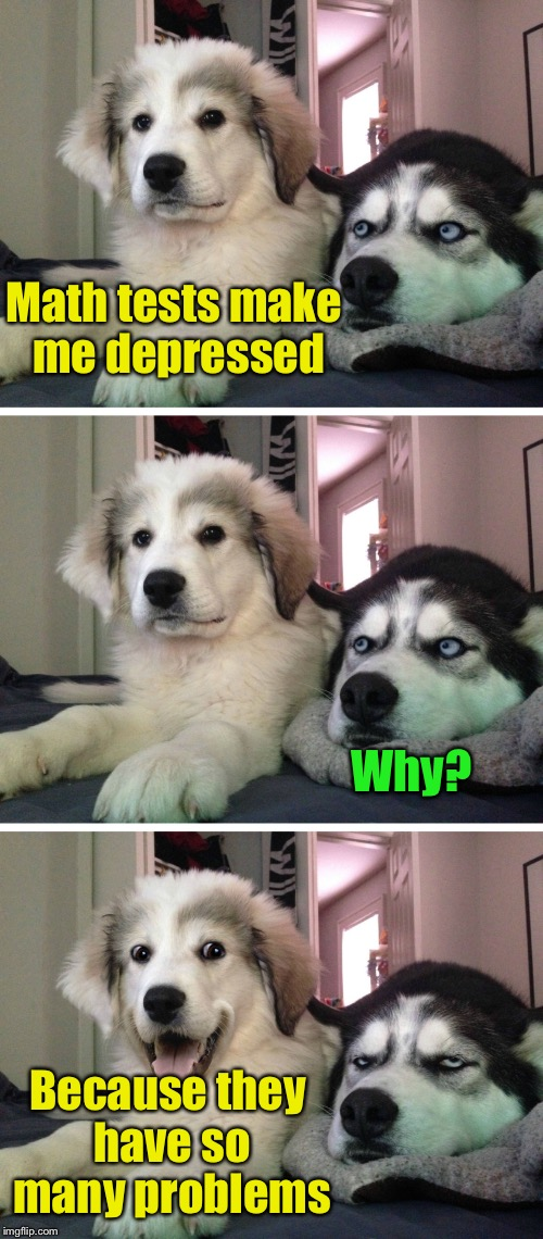 Bad pun dogs | Math tests make me depressed Because they have so many problems Why? | image tagged in bad pun dogs,memes,bad pun,math,problems | made w/ Imgflip meme maker