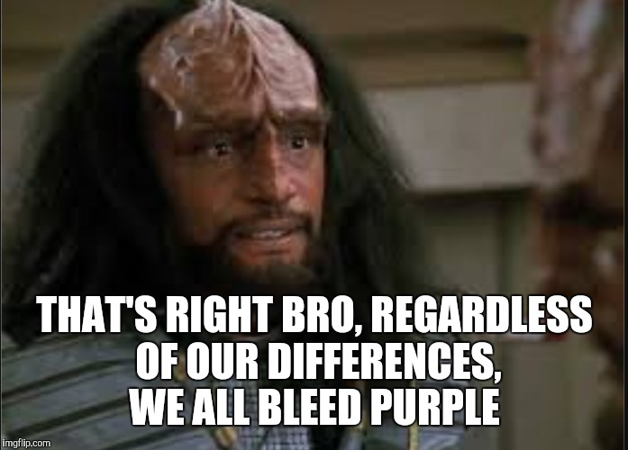 THAT'S RIGHT BRO, REGARDLESS OF OUR DIFFERENCES, WE ALL BLEED PURPLE | made w/ Imgflip meme maker