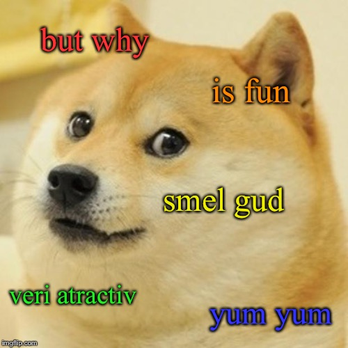 Doge Meme | but why is fun smel gud veri atractiv yum yum | image tagged in memes,doge | made w/ Imgflip meme maker