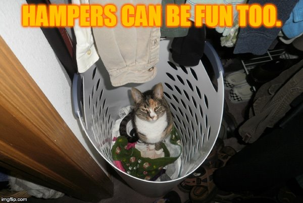 HAMPERS CAN BE FUN TOO. | made w/ Imgflip meme maker