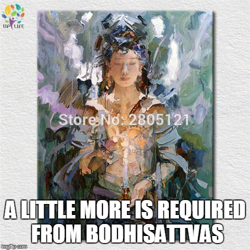 A LITTLE MORE IS REQUIRED FROM BODHISATTVAS | made w/ Imgflip meme maker