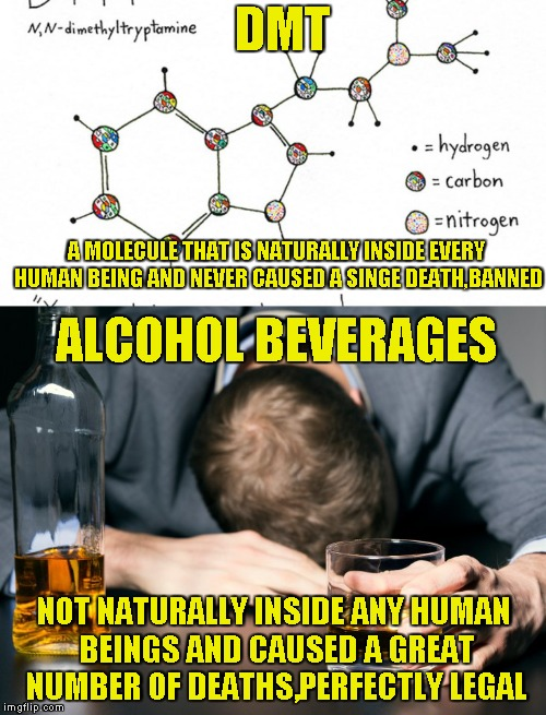 DMT NOT NATURALLY INSIDE ANY HUMAN BEINGS AND CAUSED A GREAT NUMBER OF DEATHS,PERFECTLY LEGAL A MOLECULE THAT IS NATURALLY INSIDE EVERY HUMA | made w/ Imgflip meme maker