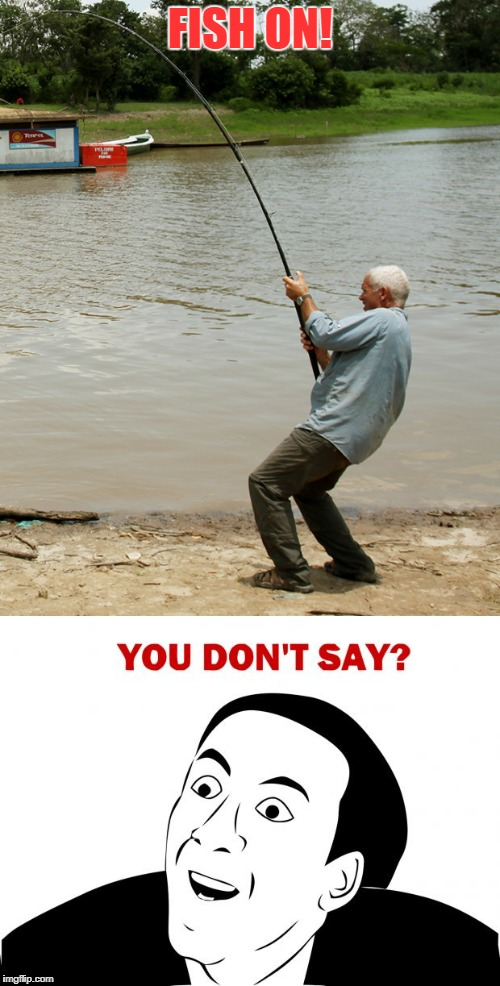 Jeremy states the obvious!!! | FISH ON! | image tagged in fishing,you don't say | made w/ Imgflip meme maker