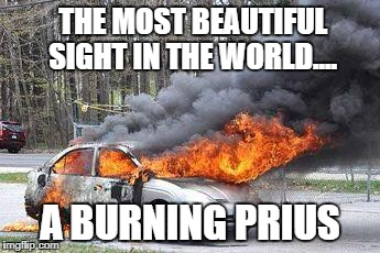 Beautiful...... | THE MOST BEAUTIFUL SIGHT IN THE WORLD.... A BURNING PRIUS | image tagged in cars,prius,fire | made w/ Imgflip meme maker