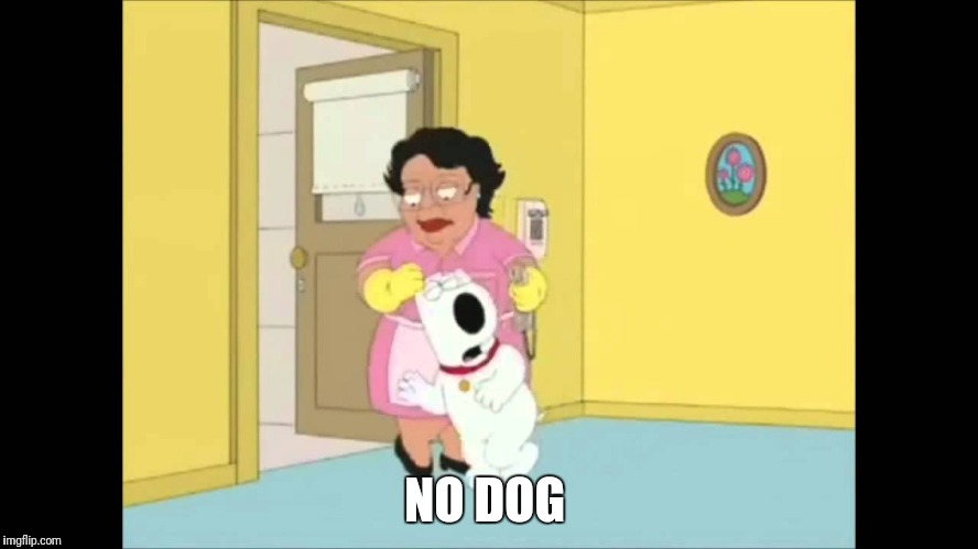 NO DOG | made w/ Imgflip meme maker