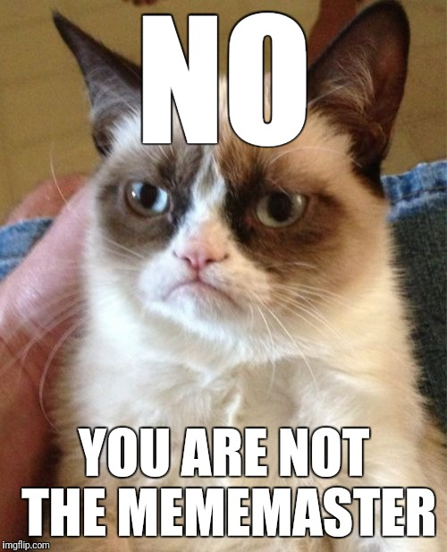 Grumpy Cat Meme | NO YOU ARE NOT THE MEMEMASTER | image tagged in memes,grumpy cat | made w/ Imgflip meme maker