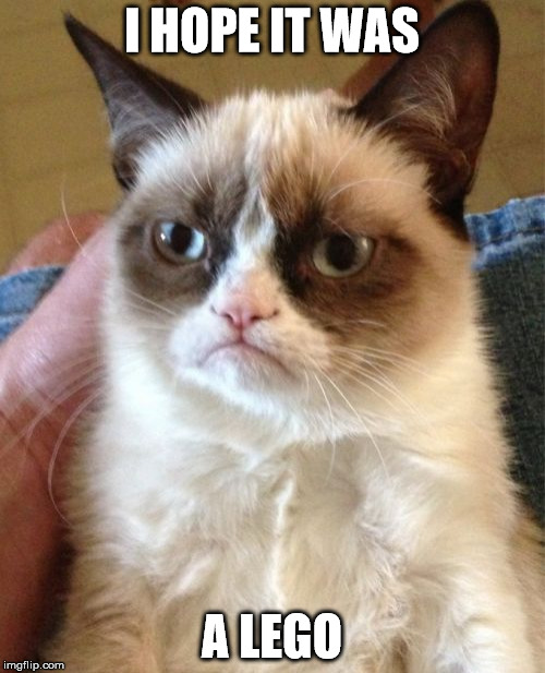Grumpy Cat Meme | I HOPE IT WAS A LEGO | image tagged in memes,grumpy cat | made w/ Imgflip meme maker