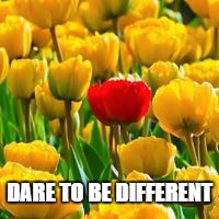 Stand up - Stand Out! | DARE TO BE DIFFERENT | image tagged in different,tulips,dare,flowers | made w/ Imgflip meme maker