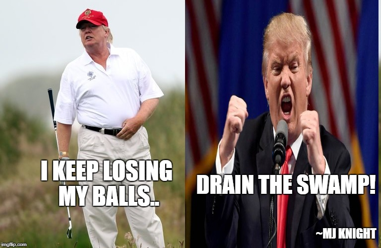 Drain the swamp to find my balls | I KEEP LOSING MY BALLS.. DRAIN THE SWAMP! ~MJ KNIGHT | image tagged in donald trump,trump,drain the swamp,republican meme,golf,trump golfing | made w/ Imgflip meme maker
