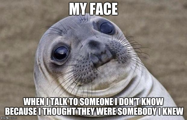 Very Awkward Moment | MY FACE WHEN I TALK TO SOMEONE I DON'T KNOW BECAUSE I THOUGHT THEY WERE SOMEBODY I KNEW | image tagged in memes,awkward moment sealion | made w/ Imgflip meme maker