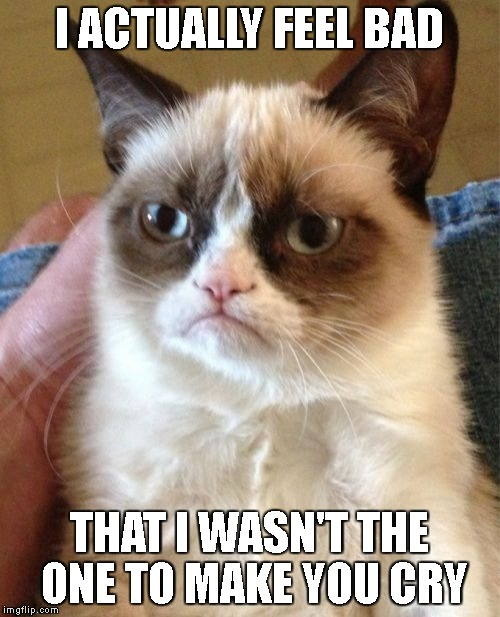 Grumpy Cat Meme | I ACTUALLY FEEL BAD THAT I WASN'T THE ONE TO MAKE YOU CRY | image tagged in memes,grumpy cat | made w/ Imgflip meme maker