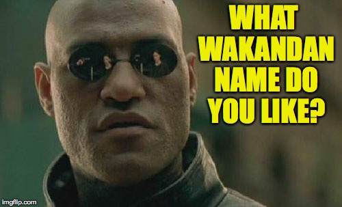 Matrix Morpheus Meme | WHAT WAKANDAN NAME DO YOU LIKE? | image tagged in memes,matrix morpheus | made w/ Imgflip meme maker