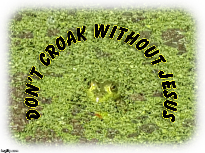 Gospel Frog | image tagged in gospel frog,don't croak without jesus,hebrews 9 27 | made w/ Imgflip meme maker