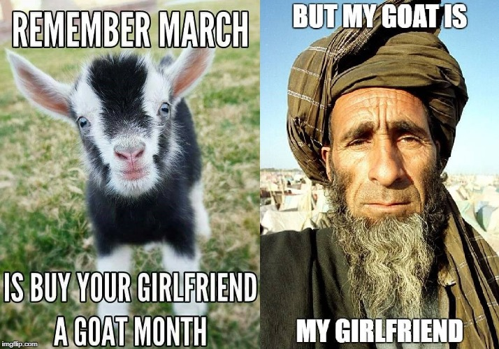 Buy your girlfriend a goat | image tagged in buy your girlfriend a goat,goat,bestiality,middle east,islamophobia,nsfw | made w/ Imgflip meme maker