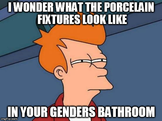 Futurama Fry Meme | I WONDER WHAT THE PORCELAIN FIXTURES LOOK LIKE IN YOUR GENDERS BATHROOM | image tagged in memes,futurama fry | made w/ Imgflip meme maker