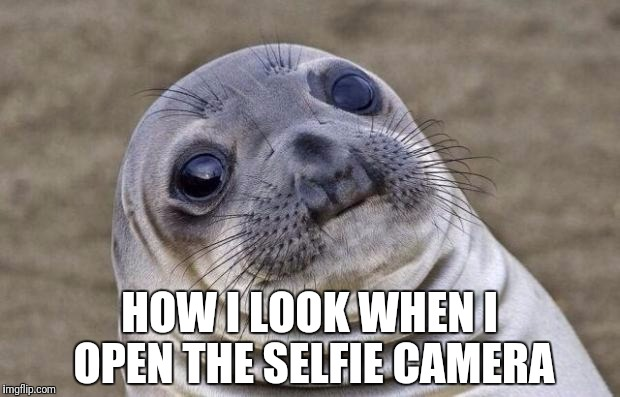 Who has been here | HOW I LOOK WHEN I OPEN THE SELFIE CAMERA | image tagged in memes,awkward moment sealion | made w/ Imgflip meme maker