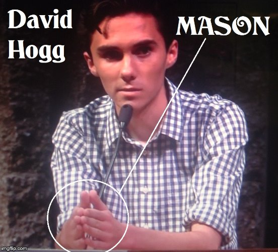 David Hogg Masonic Agent Of Lucifer | image tagged in david hogg | made w/ Imgflip meme maker