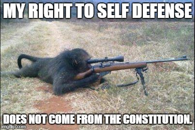 Repeal this | MY RIGHT TO SELF DEFENSE DOES NOT COME FROM THE CONSTITUTION. | image tagged in guns constitution | made w/ Imgflip meme maker