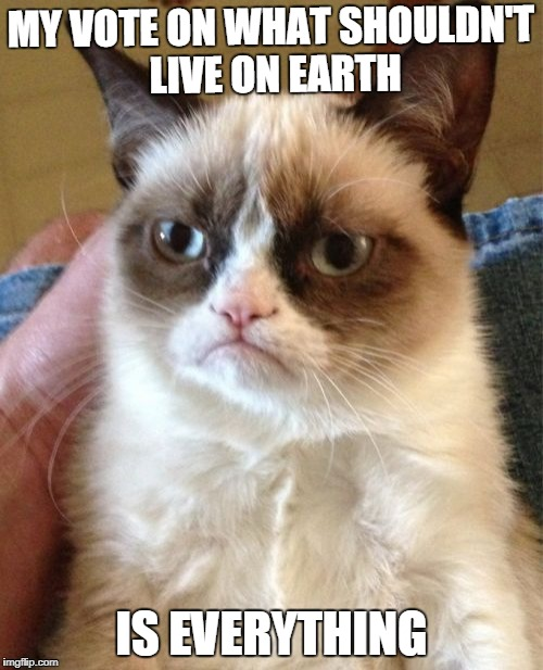 Grumpy Cat Meme | MY VOTE ON WHAT SHOULDN'T LIVE ON EARTH IS EVERYTHING | image tagged in memes,grumpy cat | made w/ Imgflip meme maker