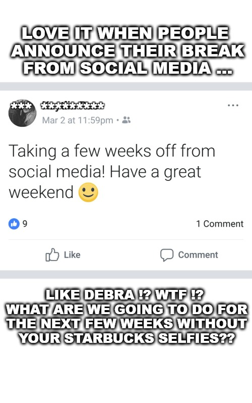 @damarketwizzard | LOVE IT WHEN PEOPLE ANNOUNCE THEIR BREAK FROM SOCIAL MEDIA ... LIKE DEBRA !? WTF !? WHAT ARE WE GOING TO DO FOR THE NEXT FEW WEEKS WITHOUT Y | image tagged in damarketwizzard | made w/ Imgflip meme maker