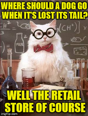 I always wondered | WHERE SHOULD A DOG GO WHEN IT'S LOST ITS TAIL? WELL THE RETAIL STORE OF COURSE | image tagged in science cat good day,cats,dogs,funny,bad puns,animals | made w/ Imgflip meme maker