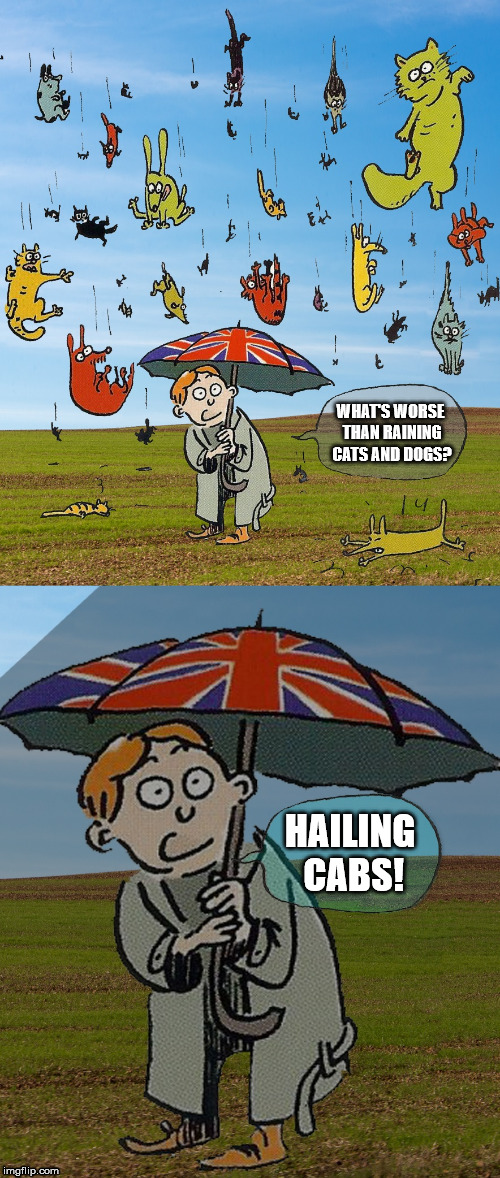 What could be worse | WHAT'S WORSE THAN RAINING CATS AND DOGS? HAILING CABS! | image tagged in what's worse than raining cats and dogs,cats,dogs,animals,funny,memes | made w/ Imgflip meme maker