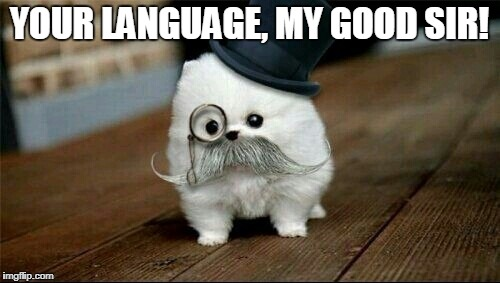 Sophisticated Dog | YOUR LANGUAGE, MY GOOD SIR! | image tagged in sophisticated dog | made w/ Imgflip meme maker
