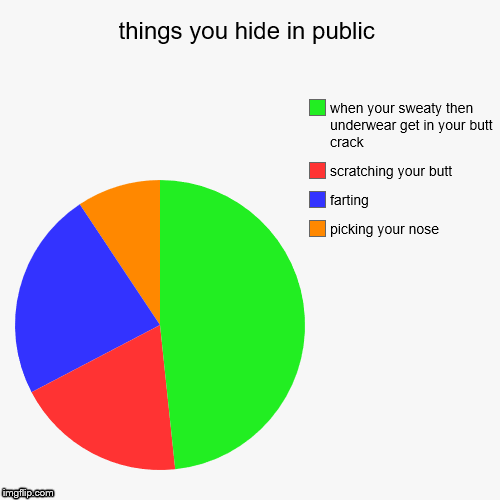 things you hide in public | picking your nose, farting, scratching your butt, when your sweaty then underwear get in your butt crack | image tagged in funny,pie charts | made w/ Imgflip pie chart maker