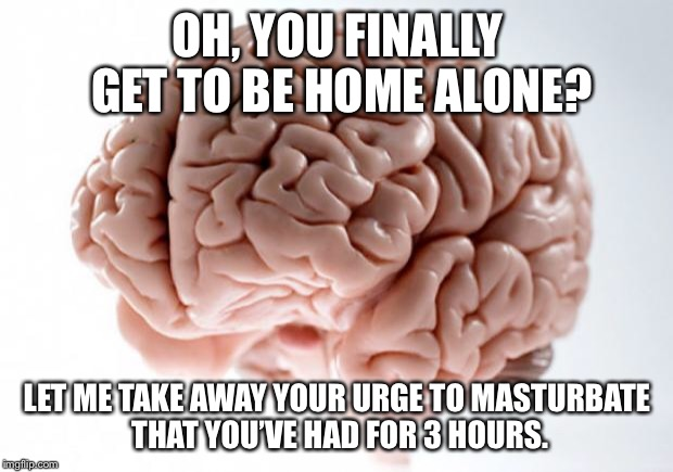 Scumbag Brain | OH, YOU FINALLY GET TO BE HOME ALONE? LET ME TAKE AWAY YOUR URGE TO MASTURBATE THAT YOU'VE HAD FOR 3 HOURS. | image tagged in scumbag brain | made w/ Imgflip meme maker