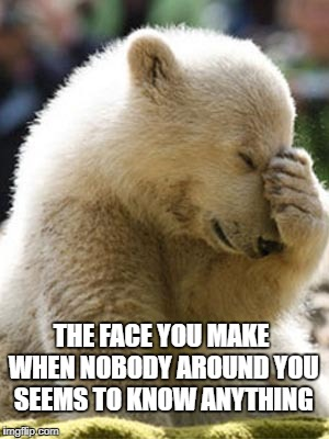 Facepalm Bear |  THE FACE YOU MAKE WHEN NOBODY AROUND YOU SEEMS TO KNOW ANYTHING | image tagged in memes,facepalm bear | made w/ Imgflip meme maker
