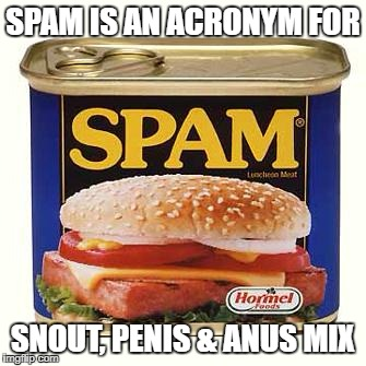 spam | SPAM IS AN ACRONYM FOR SNOUT, P**IS & ANUS MIX | image tagged in spam | made w/ Imgflip meme maker
