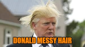 DONALD MESSY HAIR | made w/ Imgflip meme maker