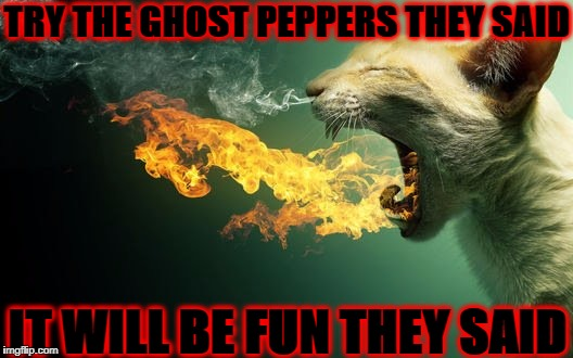 TRY THE GHOST PEPPERS THEY SAID IT WILL BE FUN THEY SAID | image tagged in ghost peppers | made w/ Imgflip meme maker
