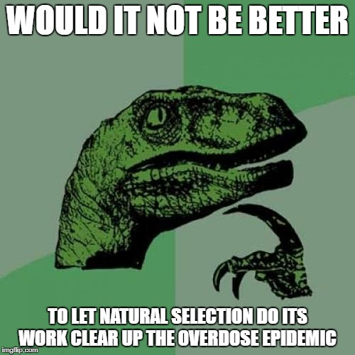Philosoraptor Meme | WOULD IT NOT BE BETTER TO LET NATURAL SELECTION DO ITS WORK CLEAR UP THE OVERDOSE EPIDEMIC | image tagged in memes,philosoraptor | made w/ Imgflip meme maker