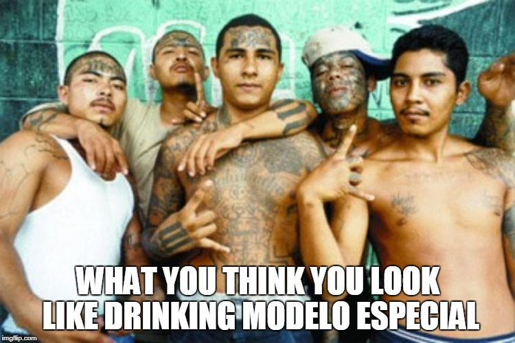 mexican gang members | WHAT YOU THINK YOU LOOK LIKE DRINKING MODELO ESPECIAL | image tagged in mexican gang members | made w/ Imgflip meme maker
