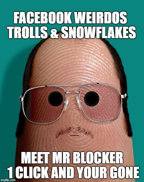 FACEBOOK WEIRDOS TROLLS & SNOWFLAKES MEET MR BLOCKER 1 CLICK AND YOUR GONE | image tagged in thumb blocker | made w/ Imgflip meme maker