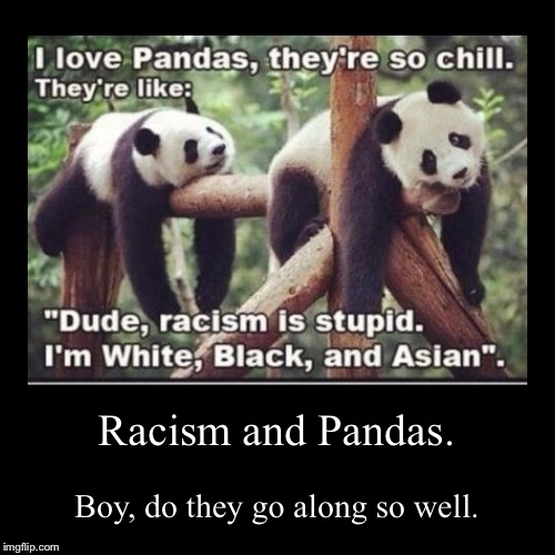 Well, he isn't wrong... | Racism and Pandas. | Boy, do they go along so well. | image tagged in funny,demotivationals,racism,panda,chill,asian | made w/ Imgflip demotivational maker