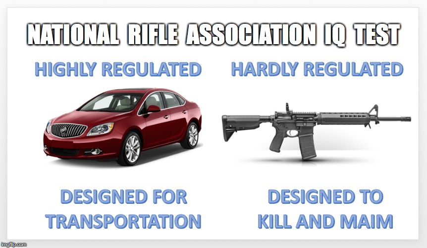 Destroys the Illogical Cars Kill People,Too, Argument | NATIONAL  RIFLE  ASSOCIATION  IQ  TEST | image tagged in nra,gun control | made w/ Imgflip meme maker