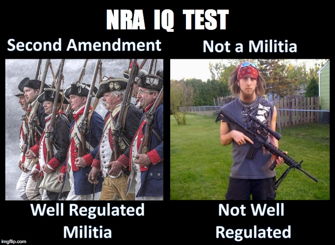 Destroys NRA Myth  | NRA  IQ  TEST | image tagged in nra,constitution | made w/ Imgflip meme maker
