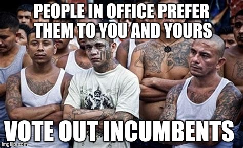 PEOPLE IN OFFICE PREFER THEM TO YOU AND YOURS VOTE OUT INCUMBENTS | image tagged in ms13 family pic | made w/ Imgflip meme maker