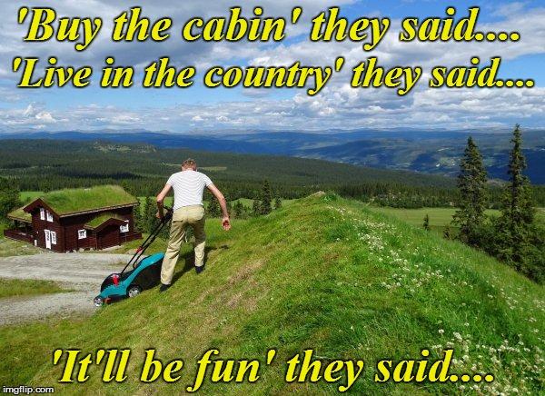 No, I'm NOT having fun! | 'Buy the cabin' they said.... 'It'll be fun' they said.... 'Live in the country' they said.... | image tagged in funny | made w/ Imgflip meme maker