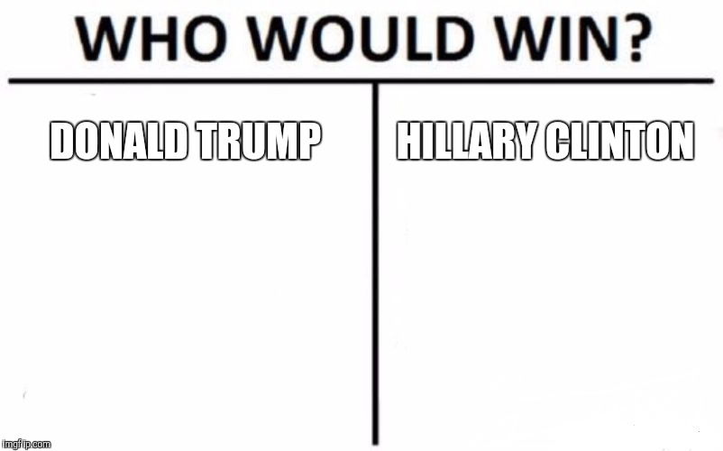 Who Would Win? Meme | DONALD TRUMP HILLARY CLINTON | image tagged in memes,who would win | made w/ Imgflip meme maker