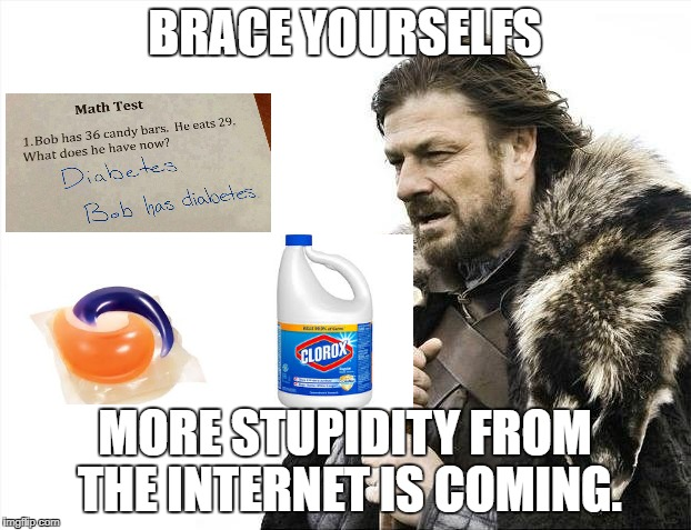 Brace Yourselves X is Coming Meme | BRACE YOURSELFS MORE STUPIDITY FROM THE INTERNET IS COMING. | image tagged in memes,brace yourselves x is coming | made w/ Imgflip meme maker